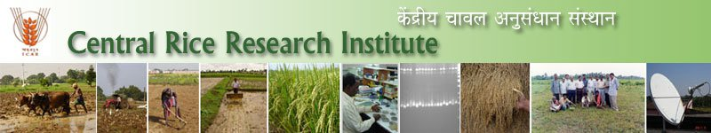 Image result for Central Rice Research Institute