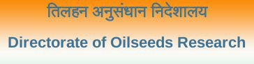 Walk-in-interview 2017 for Junior Research Fellow at Indian Institute of Oilseeds Research (IIOR), Hyderabad