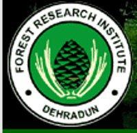 Forest Research Institute Dehradun (FRI Dehradun) July 2017 Job  for 3 Junior Consultant