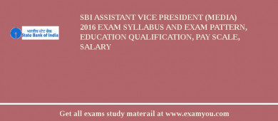 SBI Assistant Vice President (Media) 2017 Exam Syllabus And Exam Pattern, Education Qualification, Pay scale, Salary